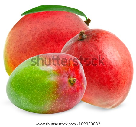 Mango isolated on white background - stock photo