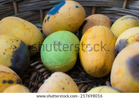 Mangoes in the basket - Only one green mango - Rotten Mango - stock photo