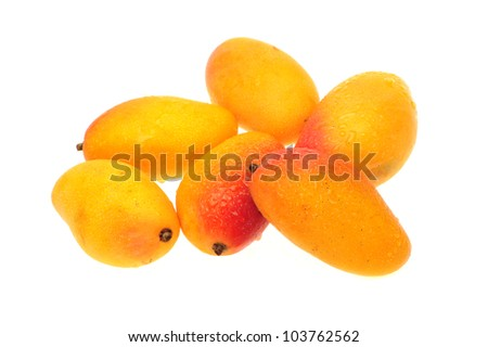 mangos on white background - stock photo
