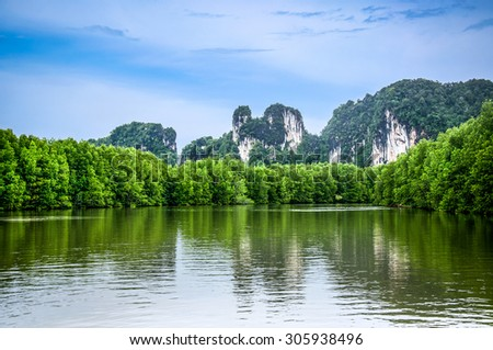 Mangrove forest, Beautiful blue sky and tropical mangrove forest at Krabi,Thailand. Intertidal forest. important for ecology coast and co-operation community. Background