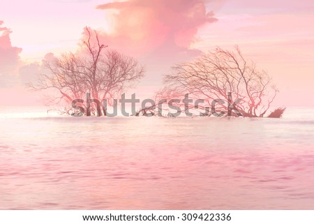Mangrove forest Coastal waters in Thailand, Lonely fallen tree on the background of the sea, overturned tree in water at sunrise (soft focus)  - stock photo