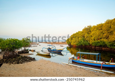 Mangrove forest in low tide with typical indonesian boats, Nusa Lembongan, Bali, Indonesia - stock photo