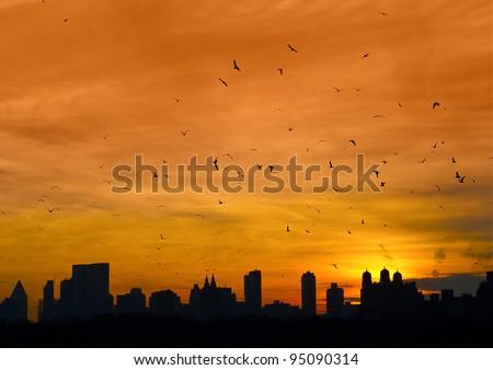Manhattan with birds flying - stock photo