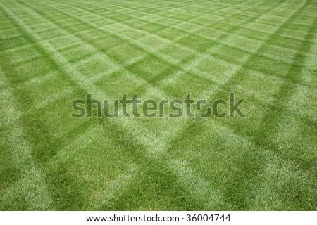 Manicured lawn professionally cut in a diamond pattern - stock photo