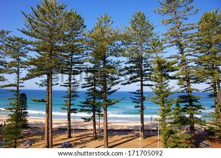 Manly Beach in Sydney Australia - stock photo