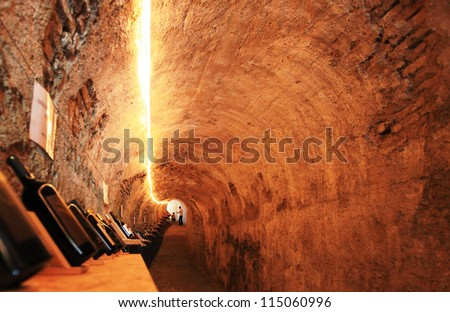 MANTOVA, ITALY - JUNE 13: Visiting the wines tunnel during Golosaria, fair show of food and gastronomy culture June 13, 2010 in Mantova, Italy. - stock photo