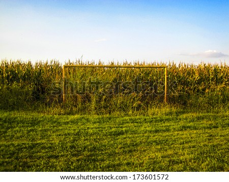 MANTUA, ITALY - AUGUST 23: Goal post with golden corn field seen at the sunset in Mantua area, August 23, 2008