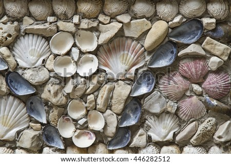 Many different types of shells adorn this wall - stock photo