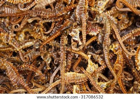 Many dried Sea Horse - stock photo