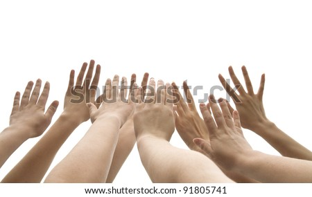 many female hands are lifted up on white background - stock photo