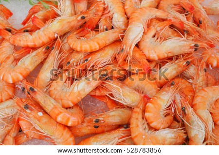 many fresh shrimps on ice
