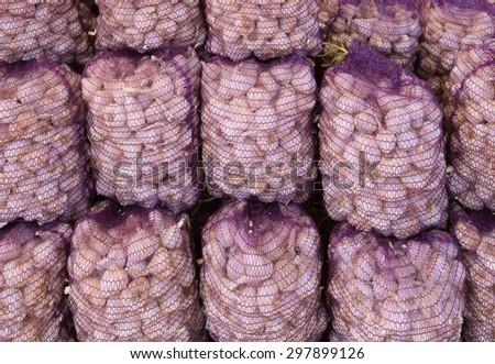 Many garlic at the market - stock photo