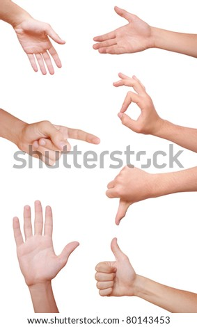 many human hands isolated on white background.