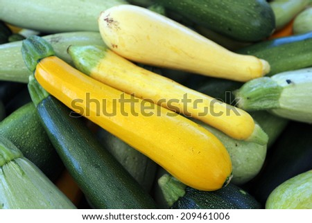 many kind of organic squash from garden