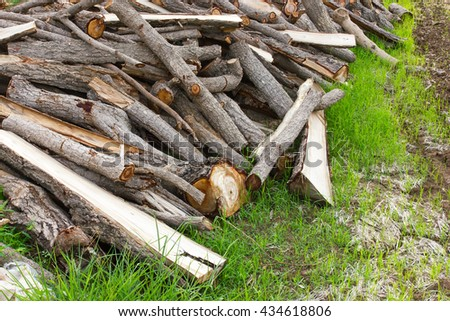 Many pieces of firewood pile of lumber on the ground in a rice field in preparation for burning wood, charcoal. - stock photo
