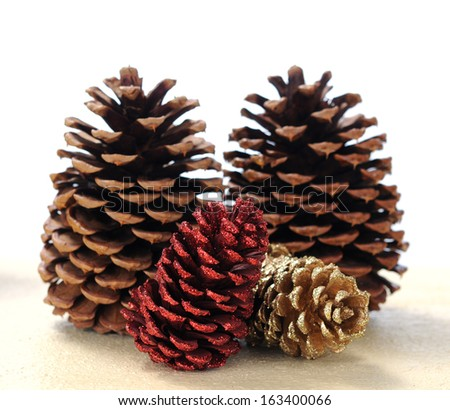 many pine cones on table  - stock photo