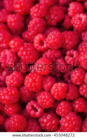 many red succulent raspberries backgrounds - stock photo