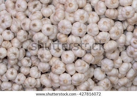 Many small piles of garlic for cooking many. the spice Condiment Ingredients A wedge of pungent aroma body - stock photo