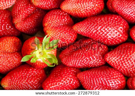 Many strawberries - stock photo