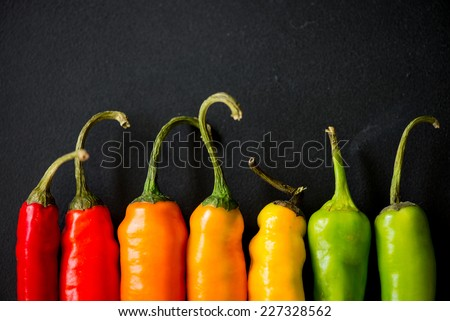many vibrant colors on peppers on black slate background - stock photo