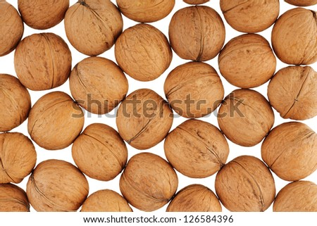 Many walnuts - stock photo