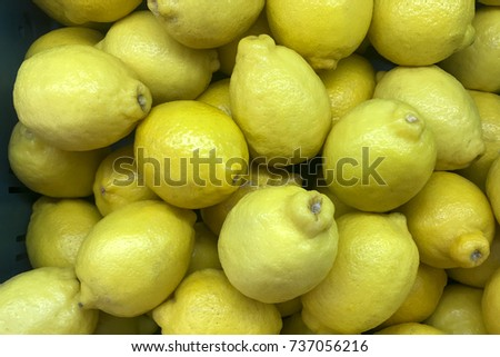 Many yellow lemon for cooking