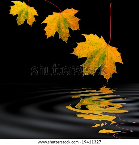 Maple leaf abstract design in fall colors over rippled water, against a black background. - stock photo