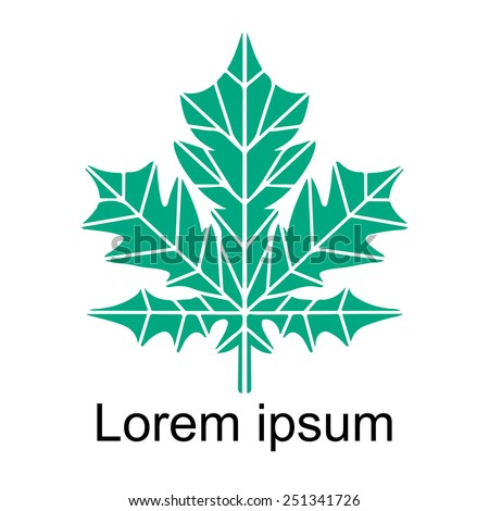 Maple leaf closeup green silhouette icon isolated on white background, art logo design - stock photo