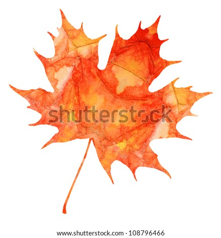 Maple leaf isolated on a white background. Watercolor. - stock photo