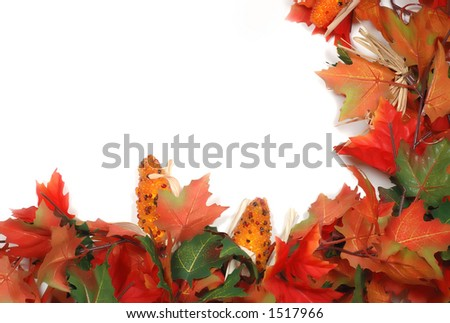Maple leafs and corn low right coner border Thanksgiving - stock photo