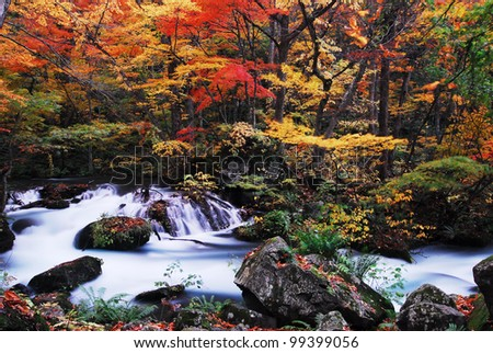 Maple River - stock photo