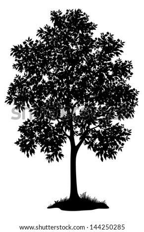 Maple tree with leaves and grass, black silhouette on white background.