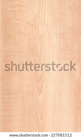 Maple Wood Texture - stock photo