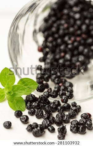 Maqui berries - stock photo