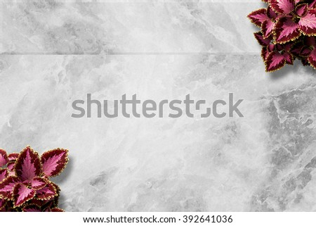 Marble Funeral Background - stock photo