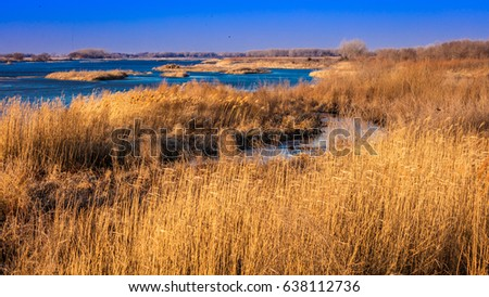 MARCH 8, 2017 - Grand Island, Nebraska -PLATTE RIVER, UNITED STATES - landscape of Platte River, Midwest.
