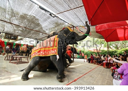 March 19, 2016 : The Elephant Show Thailand in Ayutthaya, Thailand.