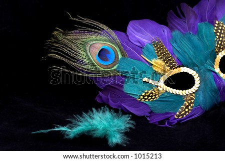 mardi gras mask with green feather - stock photo