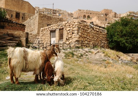 Mardin City in Turkey. - stock photo