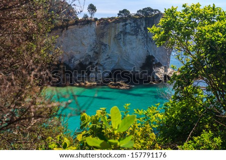 Mares Leg Cove, Coromandel Peninsula, North Island, New Zealand - stock photo