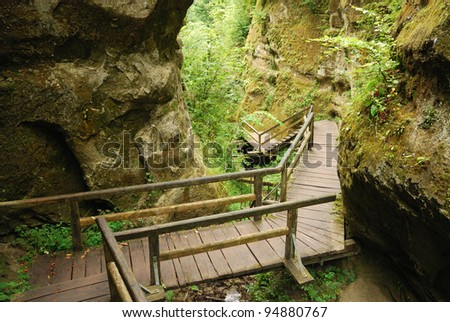Marienschlucht is a deep ravine wedged on the steep shores of lake Constance. A wooden staircase is zigzagging through the chasm, past the cliffs with lichen and ferns.