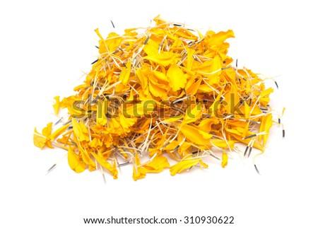 Marigold Flower Petal - stock photo