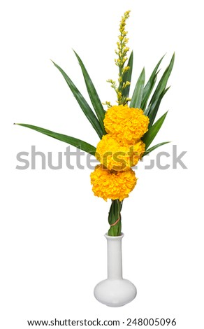 Marigold flowers in a vase isolated - stock photo