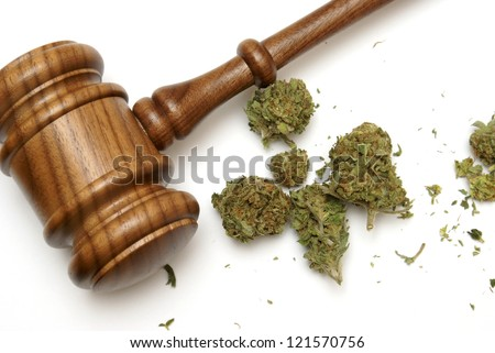 Marijuana and a gavel together for many legal concepts on the drug. - stock photo