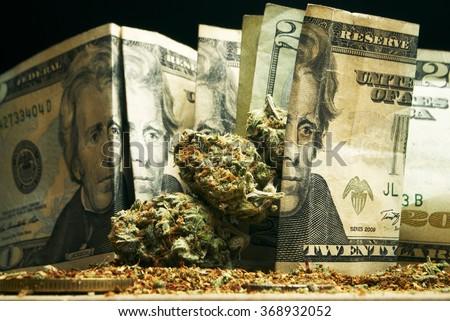 Marijuana and Money - stock photo