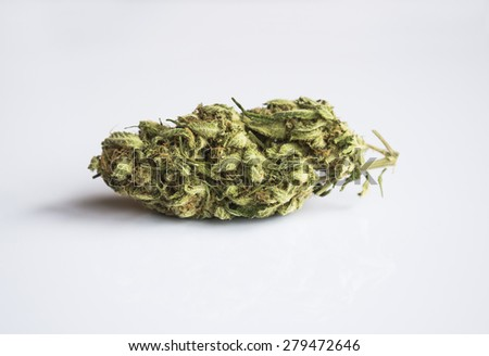 Marijuana bud isolated on clear background - stock photo