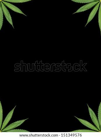 marijuana frame with black background - stock photo