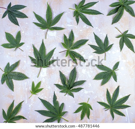 MArijuana leaf pattern over light wood background