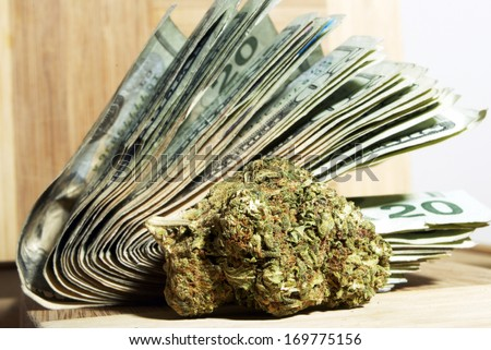 Marijuana Money - stock photo
