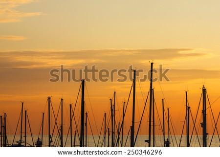 Marina - stock photo